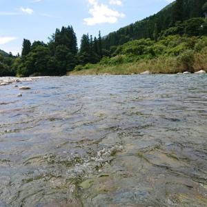 鮎釣り19回目【馬瀬川上流】