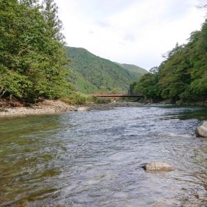 鮎釣り33回目【馬瀬川上流,付知川】