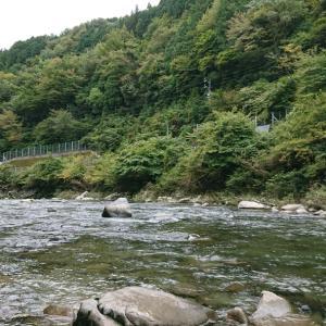付知川での鮎釣り時は今が旬の手土産も、