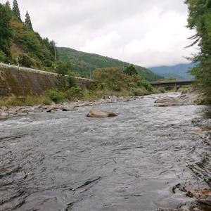 付知川のメガ鮎ランキングが更新