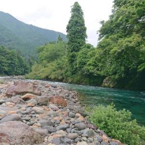 鮎釣り4回目【板取川上流】