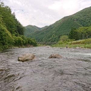 鮎釣り7回目【馬瀬川上流】