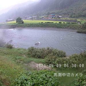 渓流釣り15回目【馬瀬川上流】