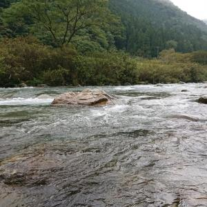 鮎釣り36回目【馬瀬川上流】