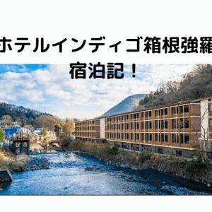 IHG日本初上陸のブランド ホテルインディゴ箱根強羅宿泊記。e
