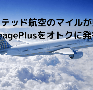 MileagePlusセゾンカード発行で11,000円分のポイントゲット!ユナイテッド航空のマイルが1.5%たまる!