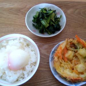 本日の昼食:セロリの炒め物
