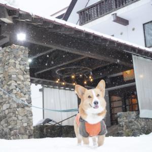 雪遊び旅行 高山に寄り道
