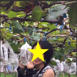 ○ シルバーウイーク連休に和歌山に遊びに行ってきました! ポルトヨーロッパ 巨峰狩り