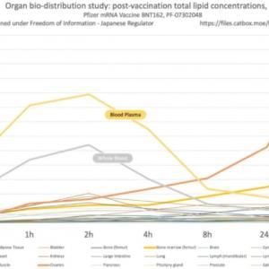 ワクチン接種による1日当たりの死者は、すでにコロナを超えている