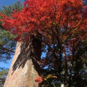 自然の妙に恵まれなかった今年の軽井沢紅葉