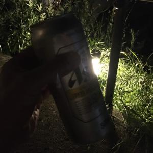 夜の散歩は楽しい
