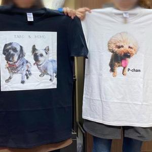 絆4 愛犬、愛猫、お子様のフォトグッズ!