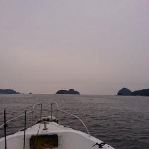2019/03/30 釣行(船)