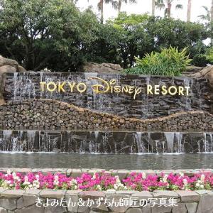 臨時休園中の東京ディズニーリゾートの様子をレポート Vol.1
