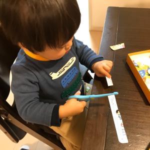 ★息子、2歳0ヶ月〜2歳1ヶ月 まとめ★