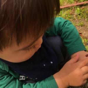 ★息子、1歳6ヶ月  まとめ★