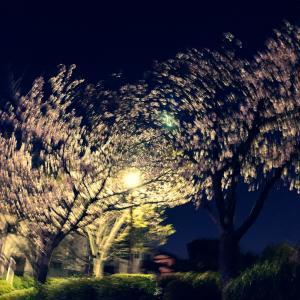 コロナの春