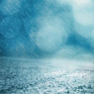 雨の中を歩くのも悪くない