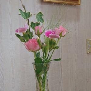 今週のお花 8