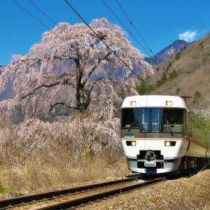 春の中央西線 桜としなの その2