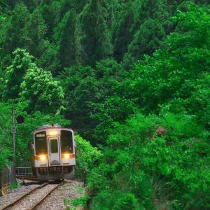 名松線 深緑の候