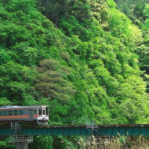 名松線 緑のグラデーション