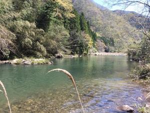 4月 渓流ルアー釣り