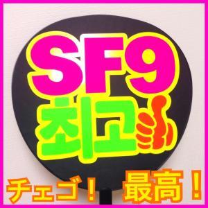 SF9うちわ・SF9ボード♩
