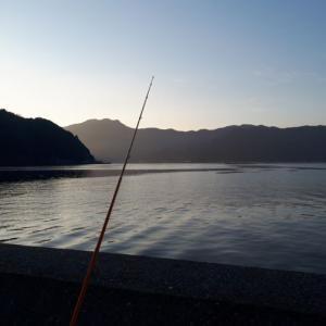 宇和海で初釣り!