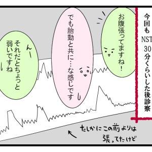 内診グリグリ【38週妊婦検診】
