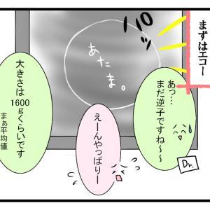 逆子の特権【30週妊婦検診①】