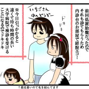 低置胎盤の行方【30週妊婦検診③】