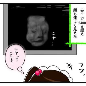 医師からのスパルタ命令【35週妊婦検診③】