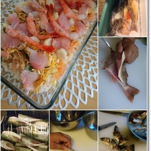 【ダンナさん食堂】市場で買った魚を美味しく調理!と王子…涙涙の水いぼ処置