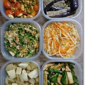 【今週の常備菜】タンパク質もボチボチ使ったけど…牡蠣鍋&姫かいじゅう現る(笑)