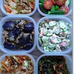 【今週の常備菜】塩辛くなってしまった調理のリカバリーと釣果飯そして2人の成長記録