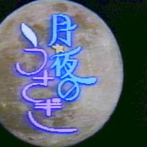 創作テレビドラマ「月夜のうさぎ」(1987年)