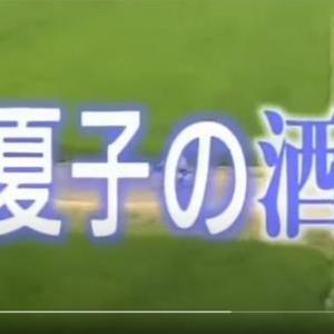 連続ドラマ「夏子の酒」(1994年)