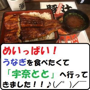 【グルメ】めいっぱい!うなぎを食べたくて「宇奈とと」へ行ってきました!!♪(/゜)/ ̄