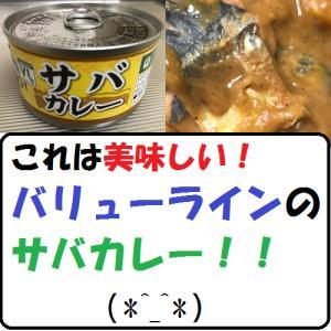 【グルメ】これは美味しい!バリューラインのサバカレー!!(*^_^*)