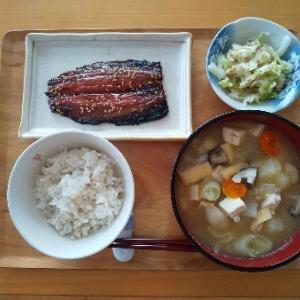 さんまの味醂干しの昼食