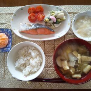塩鮭の昼食