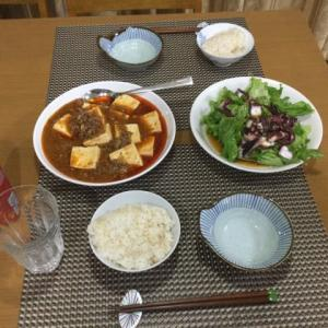 今日の一品 激辛麻婆豆腐とタコのカルパッチョ