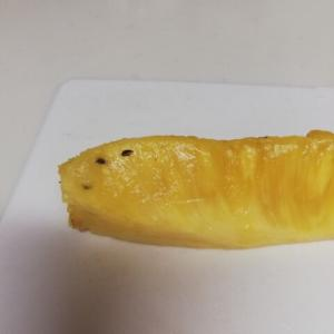 雲手 完成?             パイナップルの種