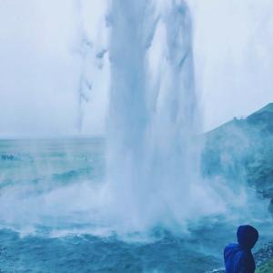 《アイスランド観光③》南海岸ツアー