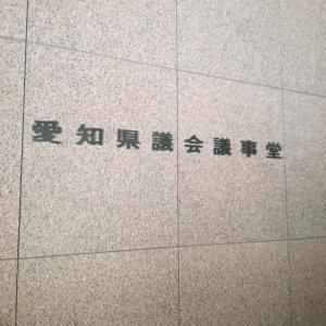 愛知県議会でアレルギーと化学物質についての質問されました