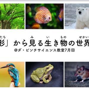 ダ・ビンチ サイエンス教室 オンライン次回(7/4)は「形」から見る生き物の世界!