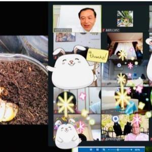 【報告】ダ・ビンチサイエンス教室 幼児・低学年クラス「虫はすごい!」