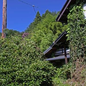 長野県岡谷市街 2019秋(32)最終回